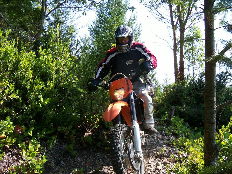 Wild Bill in Stimson Country