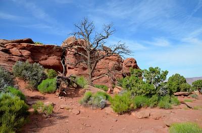 canyonlands_2014_045