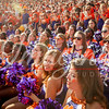clemson-tiger-band-georgia-2014-56