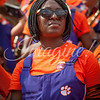 clemson-tiger-band-georgia-2014-12