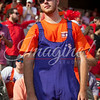 clemson-tiger-band-georgia-2014-46