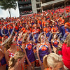 clemson-tiger-band-georgia-2014-6