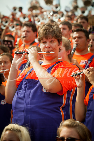 clemson-tiger-band-georgia-2014-14