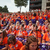 clemson-tiger-band-georgia-2014-8