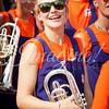 clemson-tiger-band-georgia-2014-23