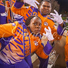 clemson-tiger-band-wakeforest-2014-55