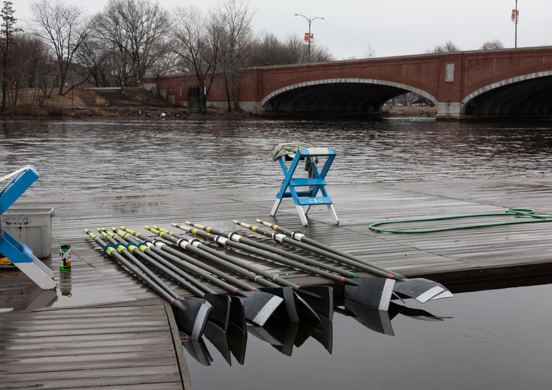 Oars lined up