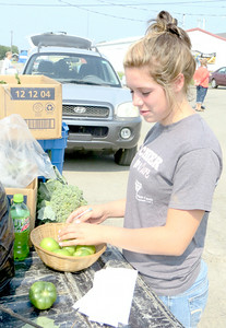 New Castle resident Ashley Glasser checked over some green tomatoes she was preparing to enter at the fair Saturday morning. She said her entries also would include broccoli, zucchini, corn, hay, flowers, eggs and oats. — Mitchel Olszak