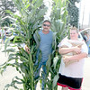 David Stoner of New Castle needed both arms to carry his corn stalks to the barn for judging. Dakota Stoner also had an armload as he prepared to enter wheat and oats. — Mitchel Olszak