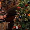 113014 fest schmidt tree