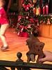 Kathy_2014-12-29_17-51-27