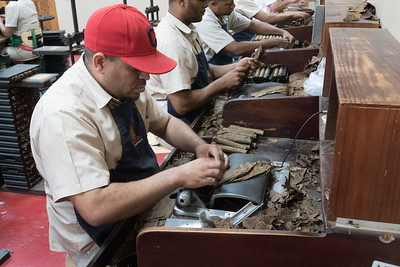 A roller at La Aurora Cigar factory