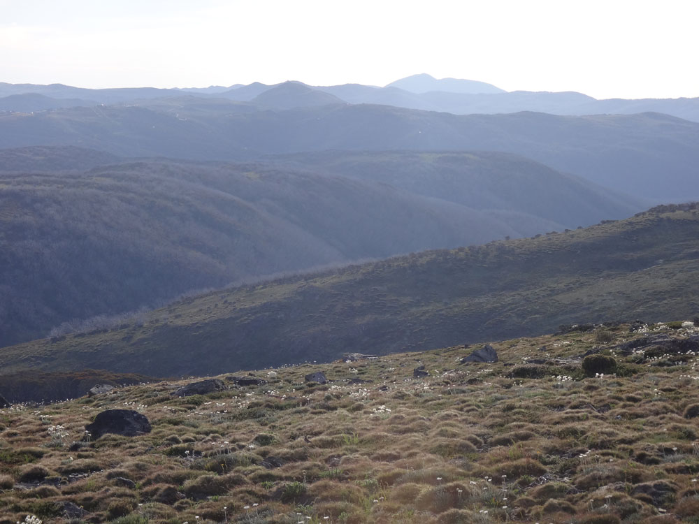 The way back to the lake, in the 3rd valley. I was alone on the roof of Australia. For miles and miles there seemed not to be a soul. Once in 2.5 hrs I thought I heard distant voices but wasn't sure. The isolation was stunning and the mountain trails beautiful to run. In fact I had no choice because of the cold...
