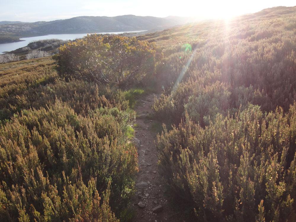 As dusk falls I complete my long run toward the lake