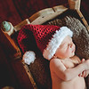 "2013 Christmas photos with the Hindels<br /> <br /> visit  <a href=""http://www.facebook.com/daniellabeanphotography"">http://www.facebook.com/daniellabeanphotography</a><br /> to see more family sessions"