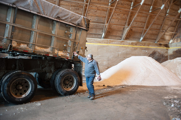 140207 Salt JOED VIERA/STAFF PHOTOGRAPHER Lockport, NY-Salt imported from Canada is dumped off of a truck by truck driver Curtis Dawson  into the Town of Lockport's salt barn on Friday, February 7th, 2014. Salt used to melt snow on roads is in short supply because of the recent heavy snowfall.