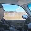 MET020614 ash window
