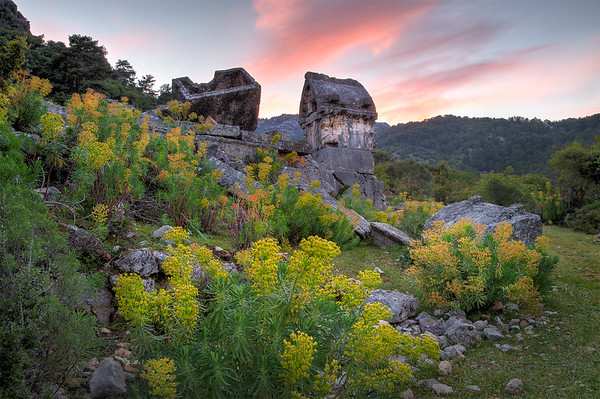 Sunset, Lycian Ruins, Flowers. Pinara, Turkey