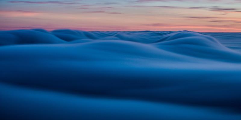 Fog Dune (3)