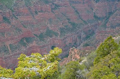 grand_canyon_2014_026