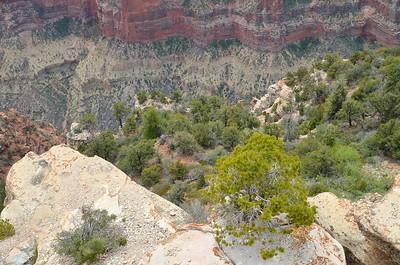 grand_canyon_2014_029