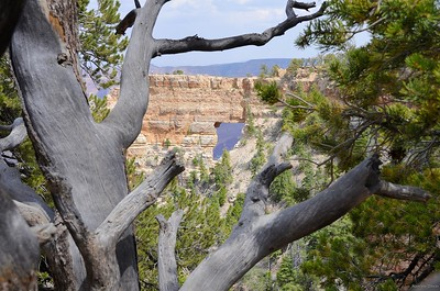 grand_canyon_2014_038