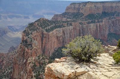 grand_canyon_2014_041