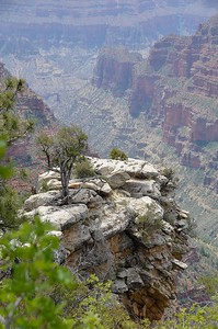 grand_canyon_2014_010