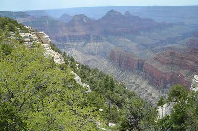 grand_canyon_2014_014
