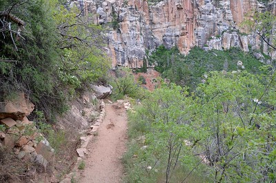 grand_canyon2_2014_010