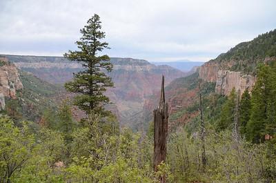 grand_canyon2_2014_002