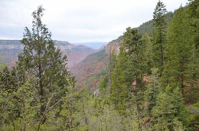 grand_canyon2_2014_003