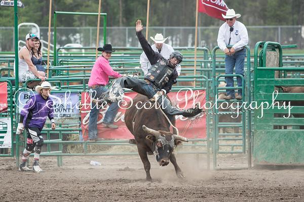Rodeo - May 31, 2014