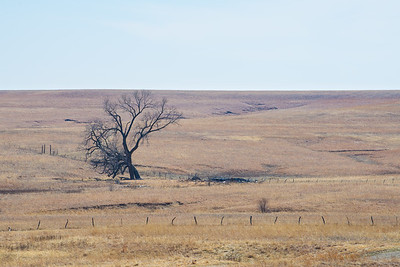 Great Plains 2014