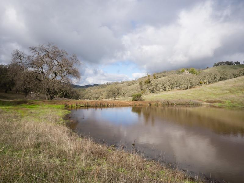Rodeo Pond