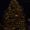 The City of Newburgh held its annual Christmas tree lighting ceremony on Wednesday,December 17, 2014. Hudson Valley Press/CHUCK STEWART, JR.