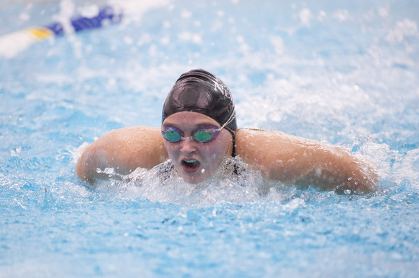 131220 NEWFANE SWIMMING  JOED VIERA/STAFF PHOTOGRAPHER Newfane, NY-Newfane sophmore Mia Ludwig swims the butterfly portion of the girls 200 yard medley relay on Friday Dec 20th, 2013. Her relay team won first place with a time of 2:11:06