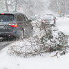 131224 3A Ent JOED VIERA/STAFF PHOTOGRAPHER Lockport, NY-Cars drive around tree branches broken in Sunday's ice storm on Church Street Tuesday Dec 24th, 2013.