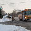 140122 young rd JOED VIERA/STAFF PHOTOGRAPHER Lockport,NY-A school bus drops a student off at the corner of Young Road and Sunset Blvd on Monday, January 22nd.