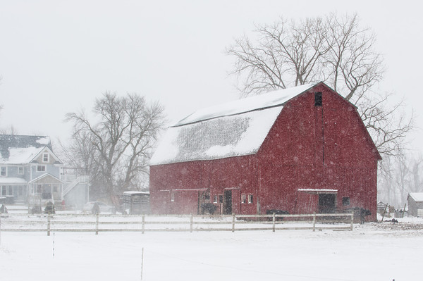 140129 3A Ent JOED VIERA/STAFF PHOTOGRAPHER Hartland, NY- Snow falls on a barn in Hartland on Monday, January 29th.