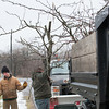 131220 3A Ent JOED VIERA/STAFF PHOTOGRAPHER Lockport, NY-Andrew Napier(left) and Joe Szramka(right) place downed tree branches on to the Napier & Sons truck at the Delphi plant on Monday Dec 23rd, 2013.