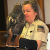 MET011714raptors red tail