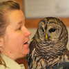 MET011714raptors barred owl