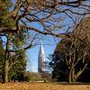 Tokyo - view from Meiji gardens