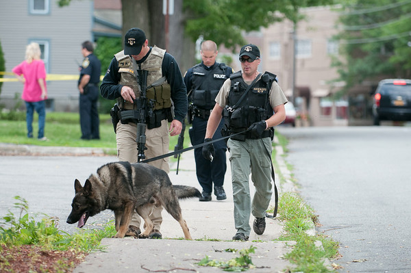 140429 JOED VIERA/STAFF PHOTOGRAPHER-Lockport, NY-A K9 leads Lockport Police and the Niagara County Sheriffs Department in the search of a suspect of the robbery of M&T Bank on Tuesday July 29th.