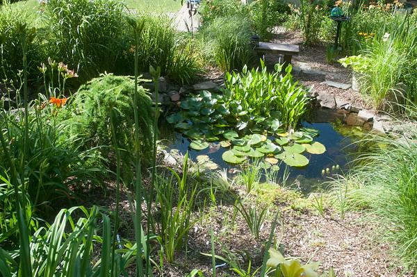 14010 JOED VIERA/STAFF PHOTOGRAPHER-Lockport, NY-A pond at the DiMino's Garden on Thursday, July 10th.
