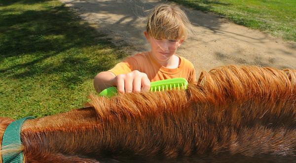 MET07514 fair hunt/comb