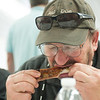140614 Wilson BBQ JOED VIERA/STAFF PHOTOGRAPHER-Wilson, NY-BBQ contest Judge Jim Garner bites into one of the entries in the rib contest on June 14, 2014