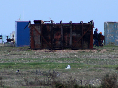 Grounded 12t Vent Van B780023 near Dungeness Lighthouse
