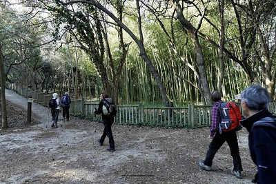 Parc du Mugel